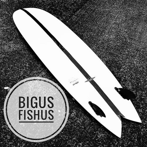 Fish Surfboards UK, Bigus Fishus